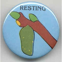 Resting Pin