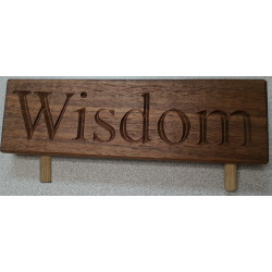 Summit Award - Wisdom