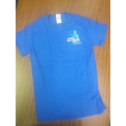 T-shirts (adult size/royal blue)